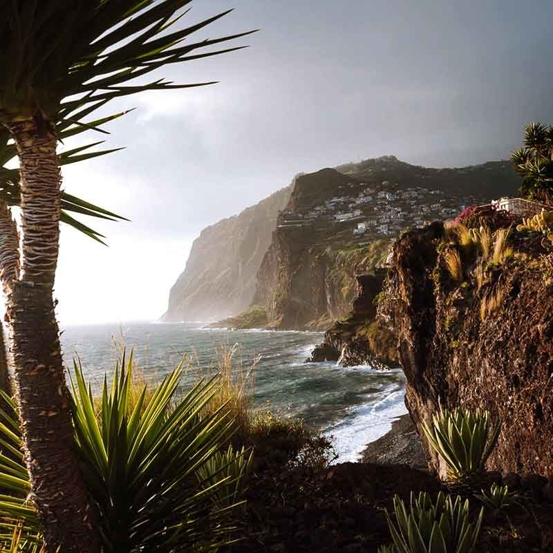 Vliegreis Madeira met ter Beek Reizen